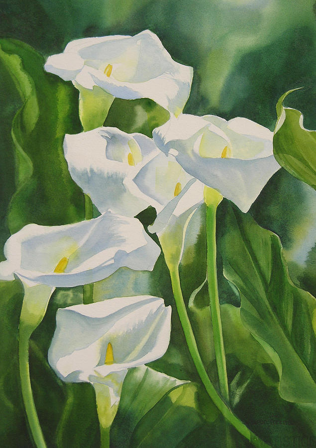 Calla Lilies Painting by Sharon Freeman