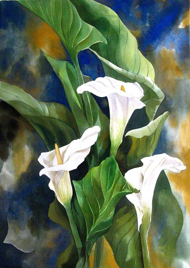 Watercolor Painting - Calla Lily by Alfred Ng