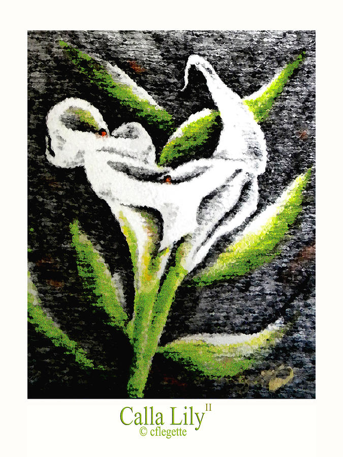 Calla Lily Drawing - Calla Lily II by C F Legette
