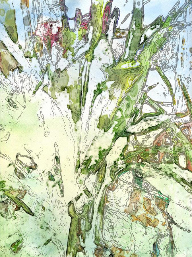Calla Digital Art - Callas by Jennifer Woodworth