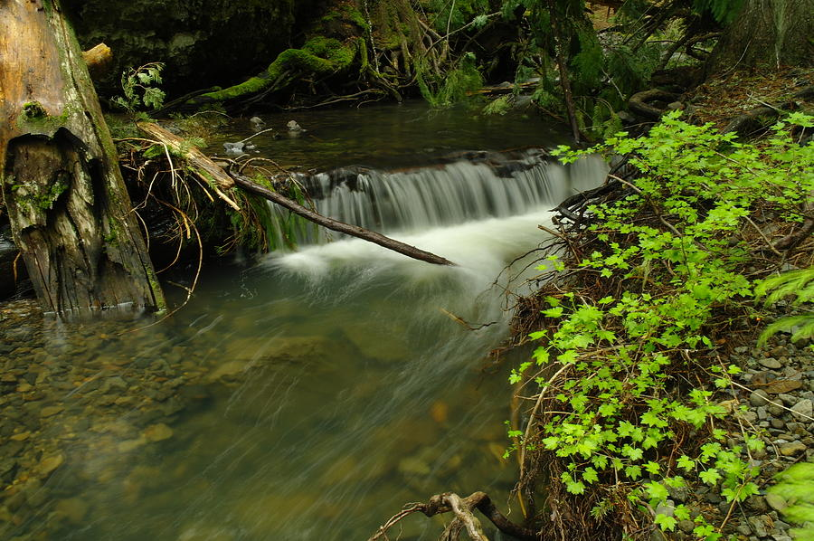 Water Photograph - Calm Rapids by Jeff Swan