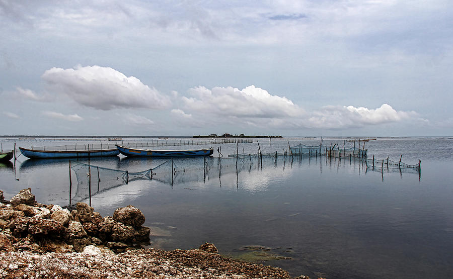 Corniche Photograph - Calmness by Sanjeewa Marasinghe