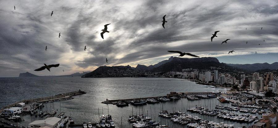 Seagulls Photograph - Calps Sky by Pedro Fernandez