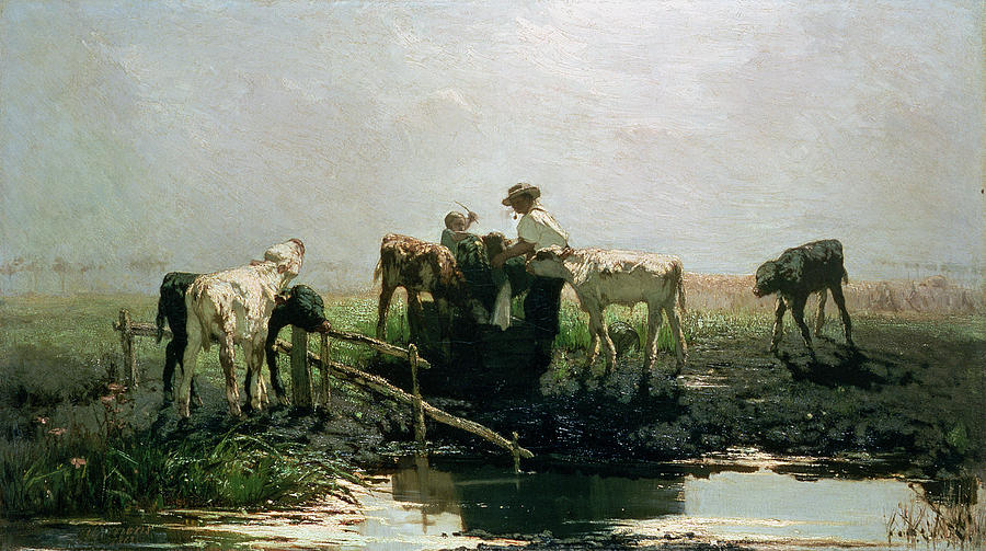 Hague School Painting - Calves At A Pond, 1863 by Willem Maris