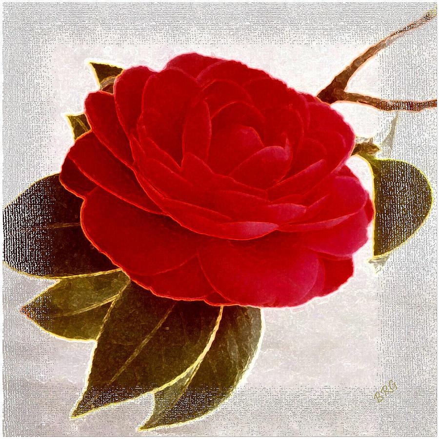 Camellia Photograph - Camellia Spectacular by Ben and Raisa Gertsberg