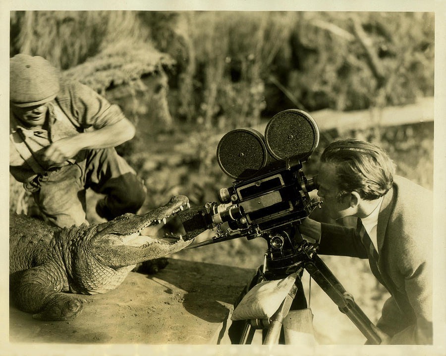 Camera Photograph - Cameraman With Alligator by Vintage