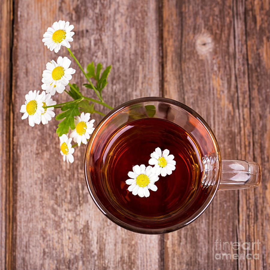 Aromatherapy Photograph - Camomile Tea by Jane Rix