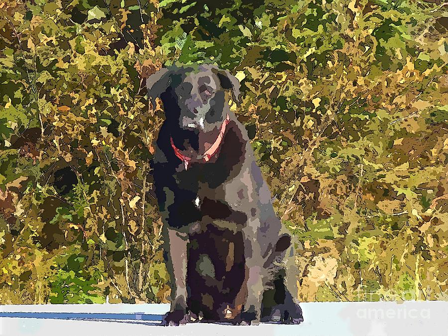 Camouflage Labrador Painting - Camouflage Labrador - Black Dog - Retriever by Barbara Griffin