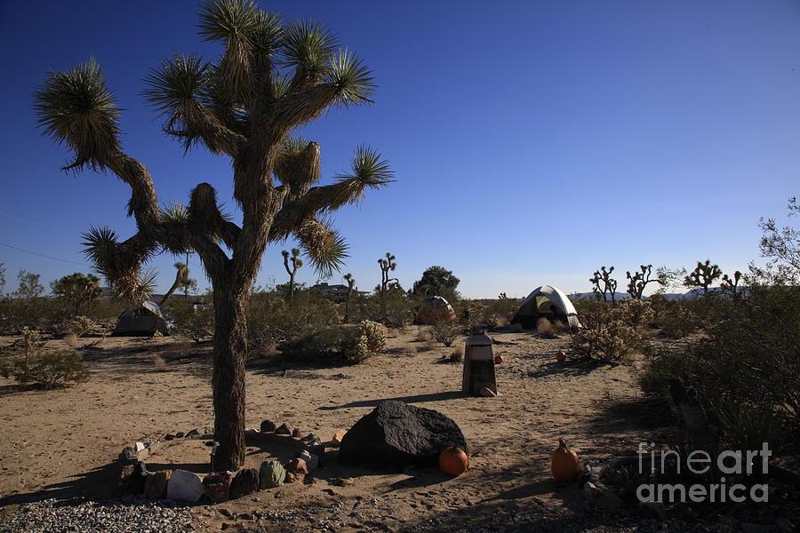 Desert Photograph - Camping In The Desert by Nina Prommer
