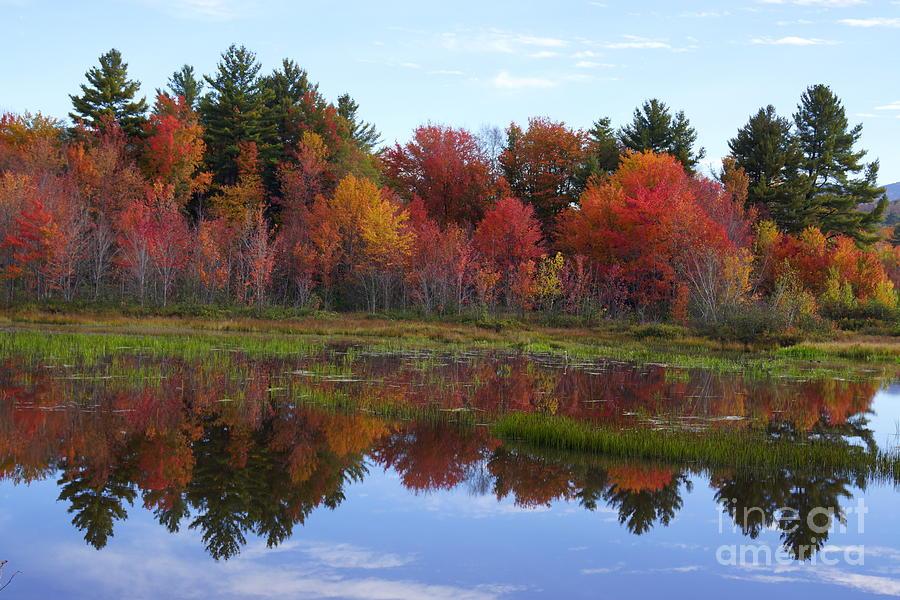 Campton Pond Photograph