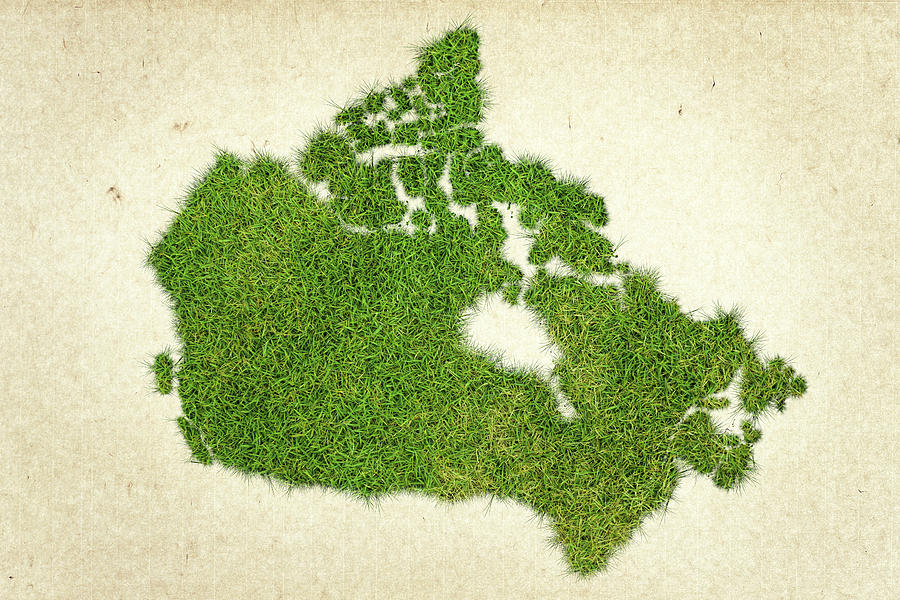 Map Of Canada Photograph - Canada Grass Map by Aged Pixel
