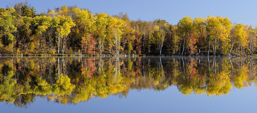 Canadian Autumn Landscape  by Don Johnston