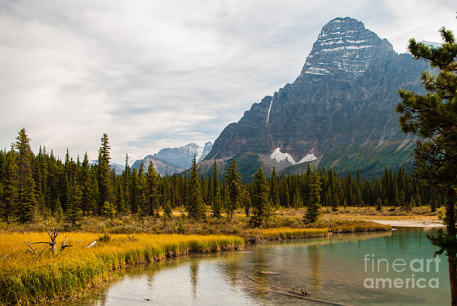 Icefields Parkway Photograph - Canadian Rockies 2.0604 by Stephen Parker