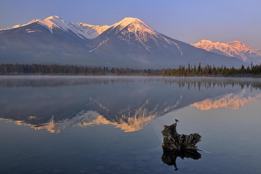 Canadian Rocky Mountain Spring Landscape by Don Johnston
