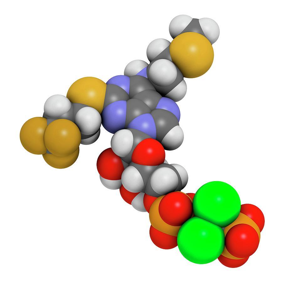 Inhibitor Photograph - Cangrelor Antiplatelet Drug Molecule by Molekuul