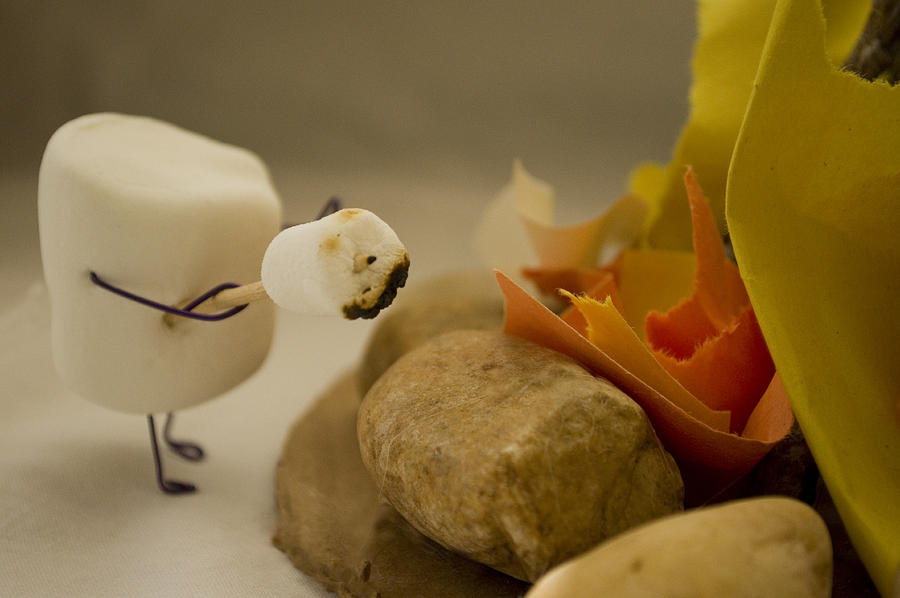 Marshmallow Photograph - Cannibalism Is Sweet by Heather Applegate