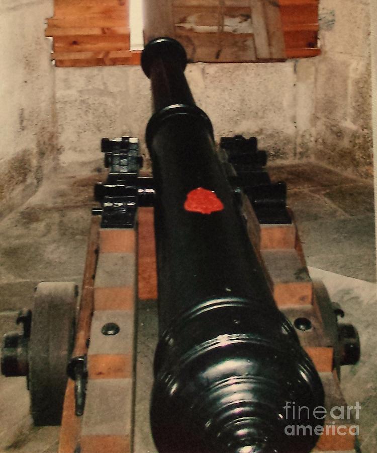Castle Photograph - Cannon At Pendennis Castle by Lisa Byrne
