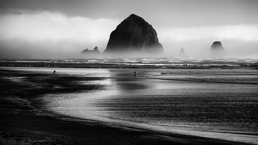 Beach Photograph - Cannon Beach by Martin Rak