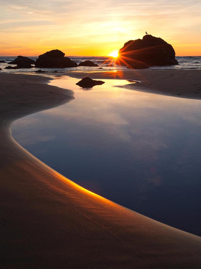 Cannon Beach Sunset Vertical by Susan Rovira