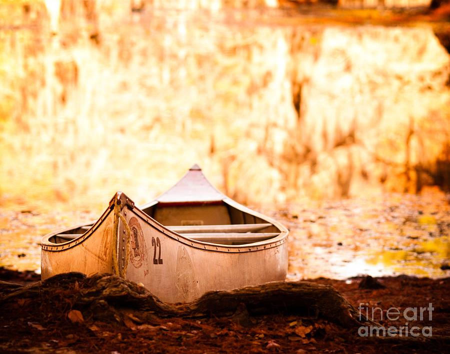 Canoe Photograph - Canoe On Caddo Lake by Sonja Quintero