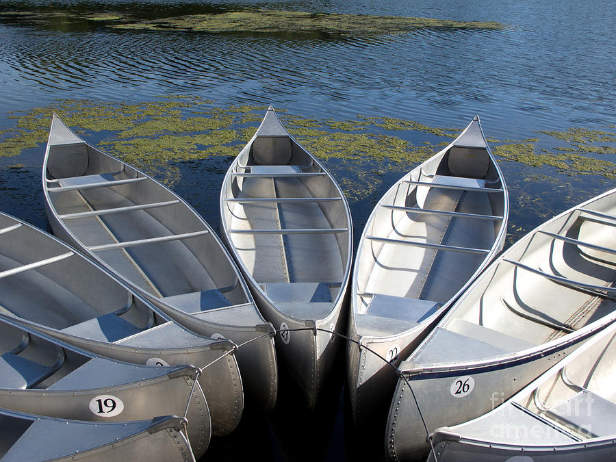 Canoes Photograph - Canoes by Ann Horn