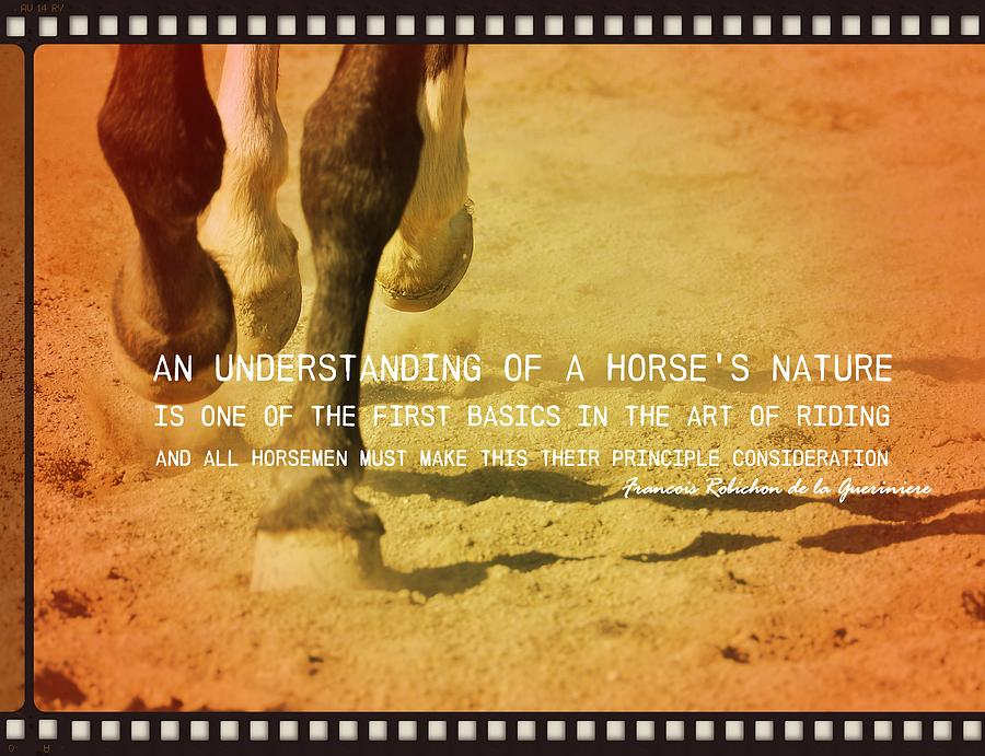 Horse Photograph - Cantering Along Quote by JAMART Photography