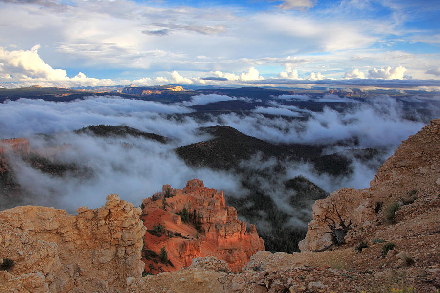 Bryce Canyon National Park Photograph - Canyon Clouds by Darryl Wilkinson