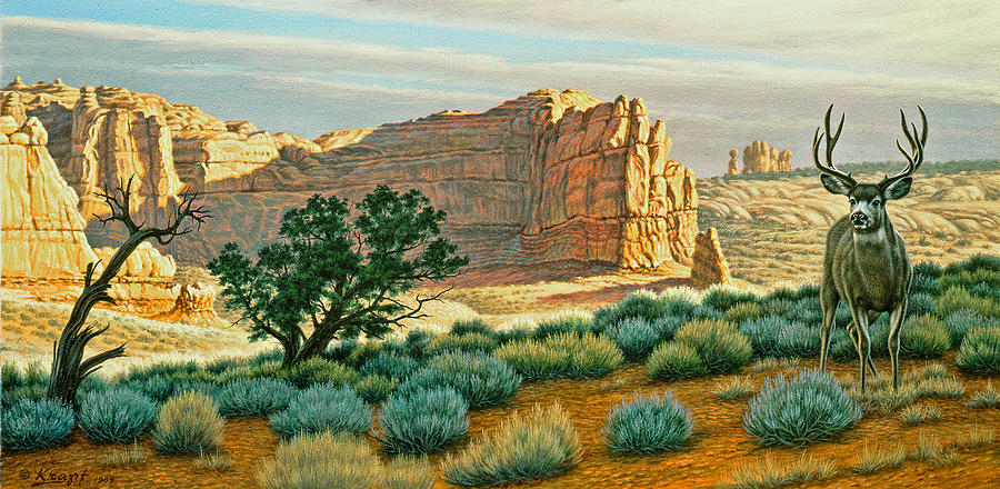 Wildlife Painting - Canyon Country Buck by Paul Krapf