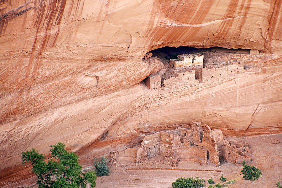 White Photograph - Canyon De Chelly White House Ruins by Christine Till