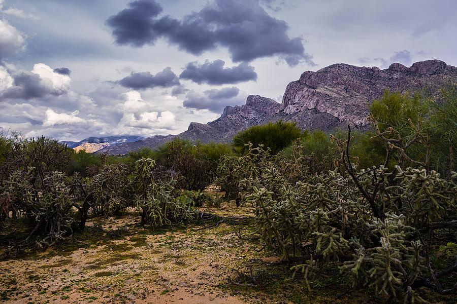 Canyon Del Oro No.45 Photograph
