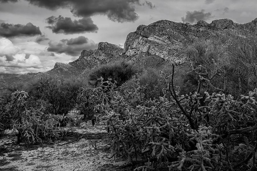 Canyon Del Oro No.48 Photograph