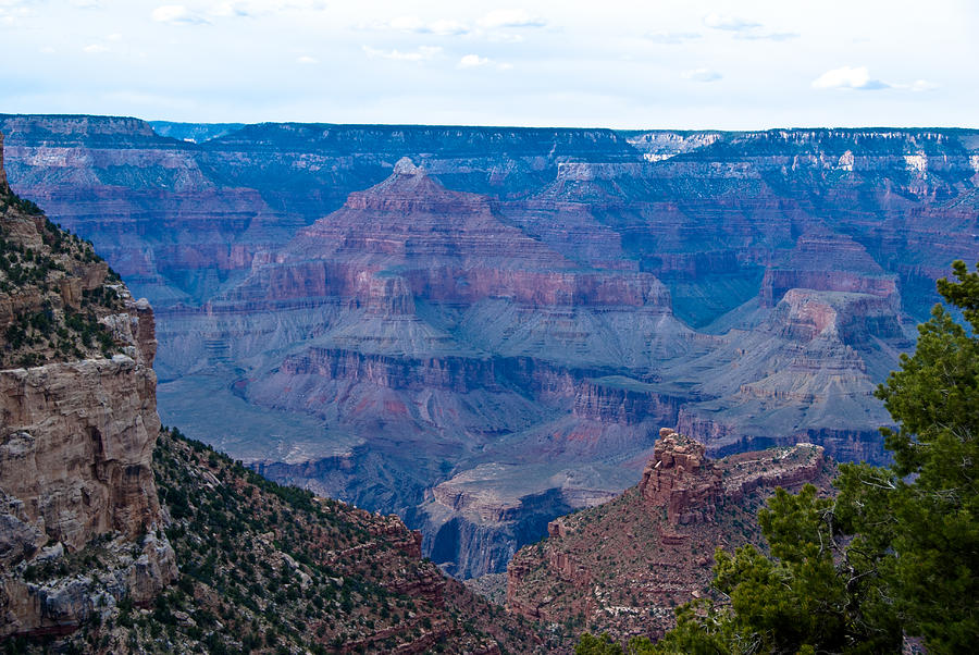 Grand Canyon Photograph - Canyon In View by Nickaleen Neff