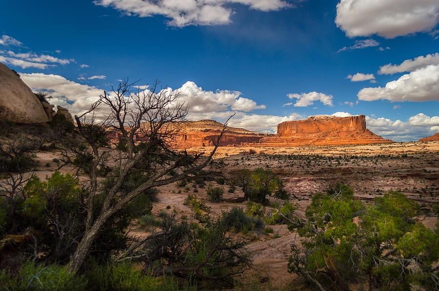 Landscape Photograph - Canyon Lands Evening by Michael J Bauer