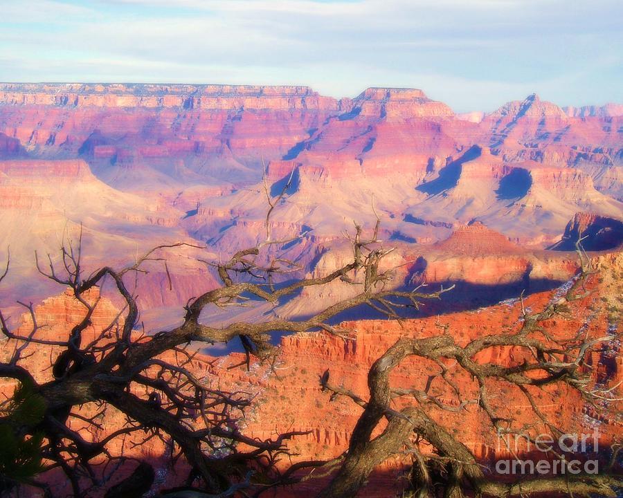 Amazon.com Photograph - Canyon Shadows by Janice Sakry