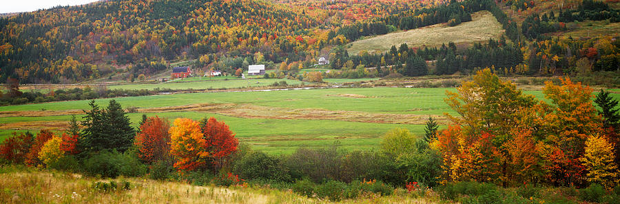 Color Image Photograph - Cape Breton Highlands Near North East by Panoramic Images