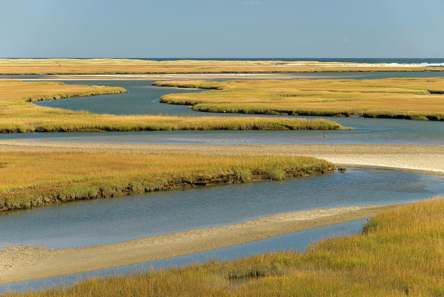 Cape Cod Wetlands Photograph by Frankvandenbergh