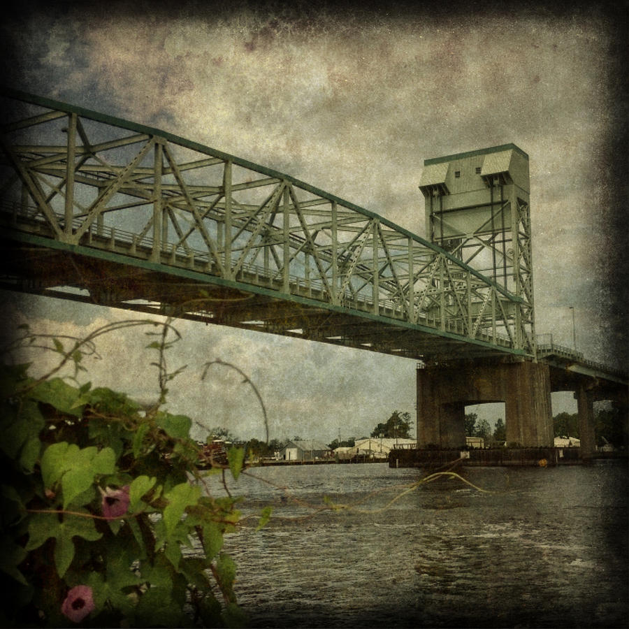Wilmington Photograph - Cape Fear Morning Glory by Dorian Hill