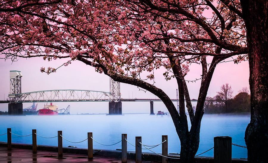 Riverscapes Photograph - Cape Fear Of Wilmington by Karen Wiles