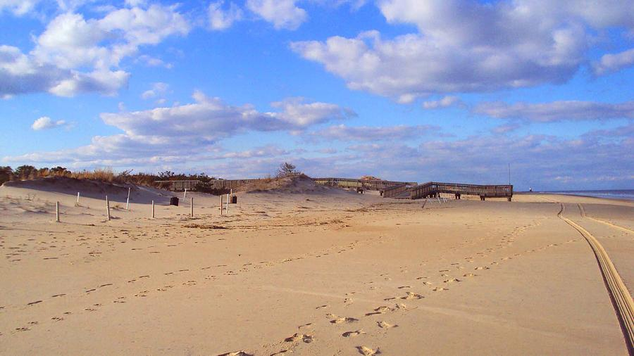 Beach Photograph - Cape Henlopen 12 by Cynthia Harvey