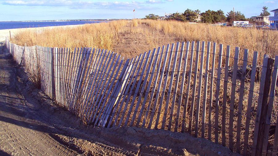 Beach Photograph - Cape Henlopen 14 by Cynthia Harvey