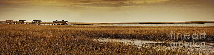 Charleston Photograph - Cape Romaine by Bruce Bain