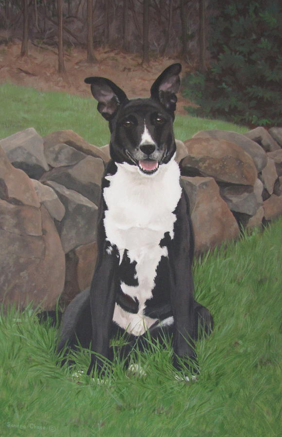 Black Dog Painting - Capone by Sandra Chase