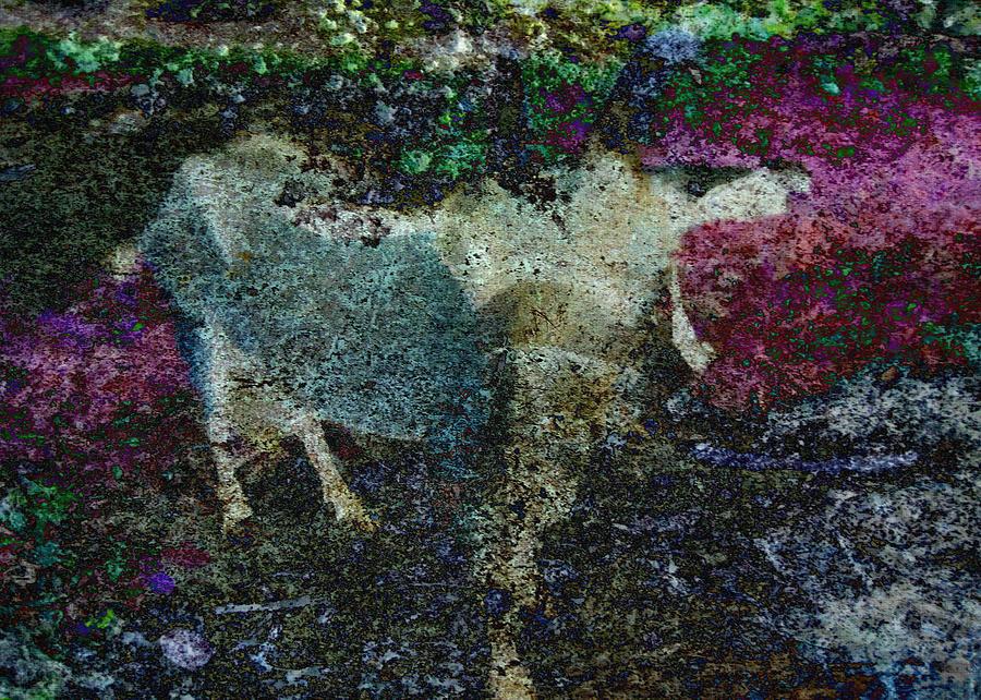 Goat Digital Art - Capricorn Abstract by Sarah Vernon