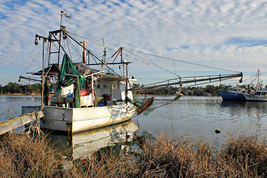 Bon Secour River Photograph - Capt Nic At The Dock by Lynn Jordan