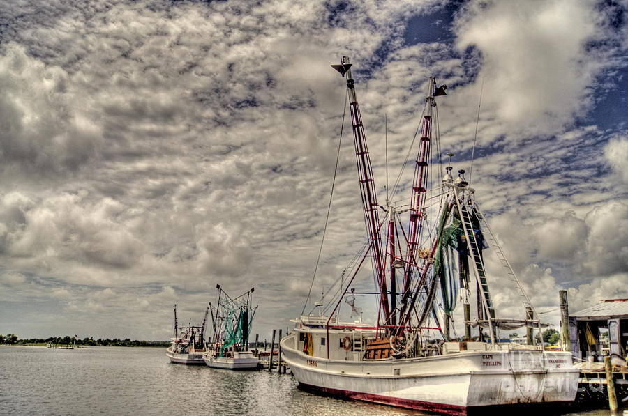 North Carolina Photograph - Captain Phillips by Benanne Stiens
