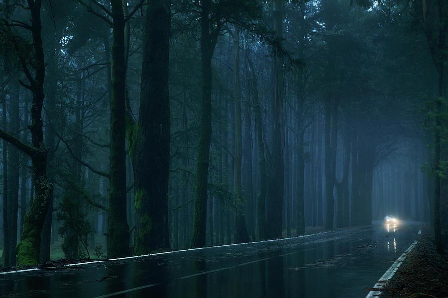 L'As de pique (Libre)  Car-on-dark-forest-road-per-mattisson