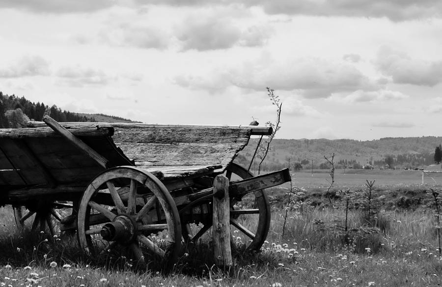 Photos Photograph - Car Without Oxen by Bajan Sorin