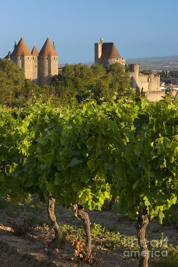 Carcassonne Photograph - Carcassonne Morning by Brian Jannsen