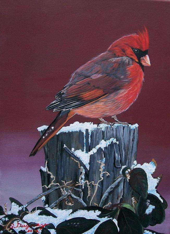 Red Bird Painting - Cardinal Winter Songbird by Sharon Duguay