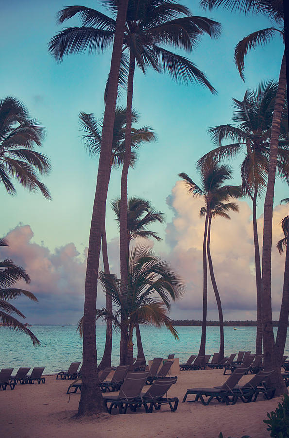 Punta Cana Photograph - Caribbean Dreams by Laurie Search